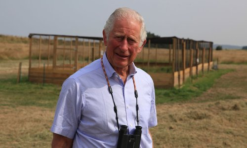 Prince Charles visits Sandringham for special reason