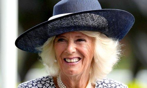 Duchess Camilla rocks a statement hat at Ascot - and looks fabulous