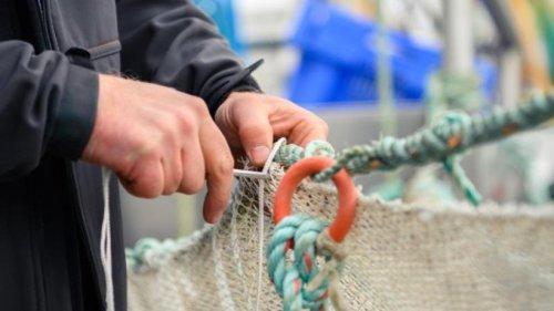 Minister sollen schädliche Fischerei-Hilfen stoppen