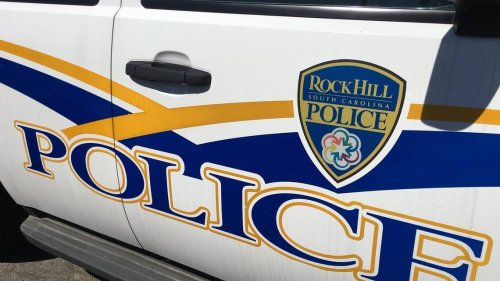 A case of unrestrained dogs: A Rock Hill man was bitten and two dogs now dead.
