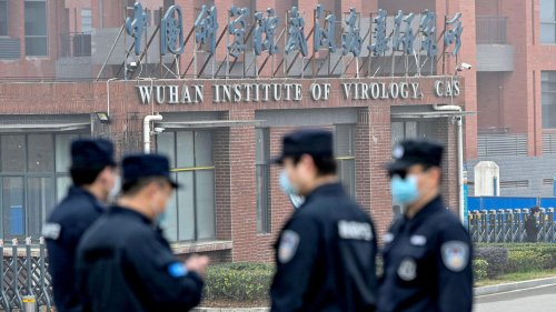 Did Covid really escape from a Wuhan virus lab? It's no longer just a conspiracy theory