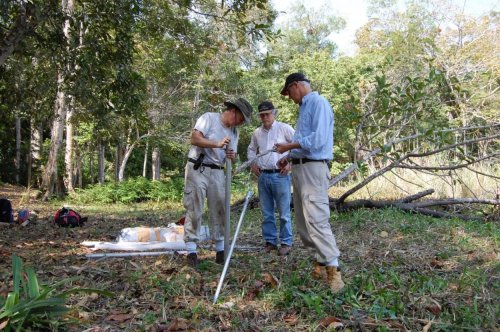 Evidence of trees and vegetables suggests that ancient Maya had parks