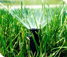 Overland Park Lawn Care Services- Heritage Lawns | Lawn Maintenance