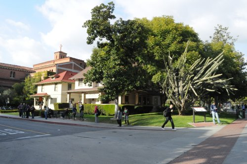 USC fraternity president named a suspect in alleged sexual assault