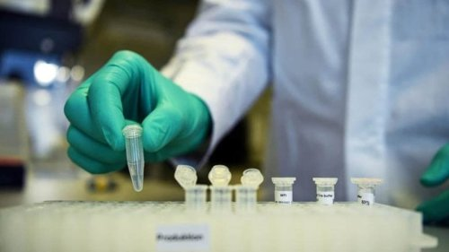 Zydus Cadila to seek emergency approval for its Covid vaccine: All you need to know