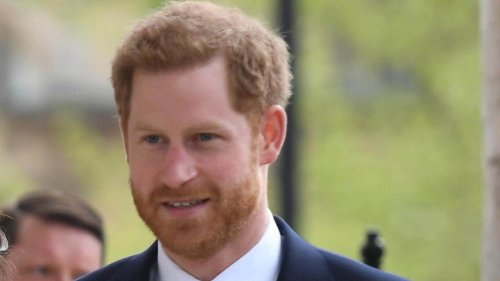 Punjab, Haryana HC ends lawyer's 'day dream' to marry Prince Harry