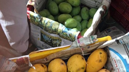 Bihar exports GI-tagged mangoes to London