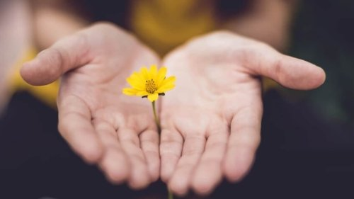 How to practice mindfulness in daily life and reduce your stress