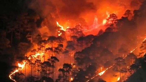 As forest fires rage in Uttarakhand, spotlight back on colonial-era problem