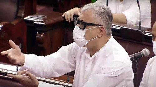 'Don't turn Parliament into fish market': Minister on 'Papri Chaat' tweet