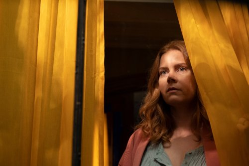 Why is Anna Fox agoraphobic? Woman in the Window condition explained