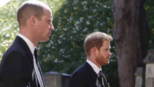 Prince William & Prince Harry Reunite For Prince Philip's Funeral Procession — Watch