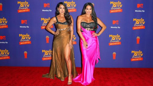Nikki Bella Stuns In Hot Pink Dress With Corset Bra At MTV Movie & TV Awards