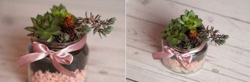 DIY Succulent Planter Inside A Small Mason Jar