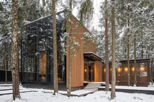 A Robust Forest House Surrounded By Pine Trees And Luxurious Finishes