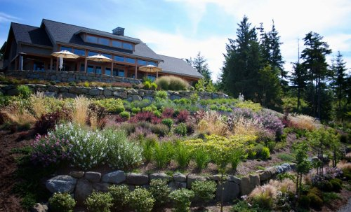 Hillside Landscaping Ideas For Any Budget