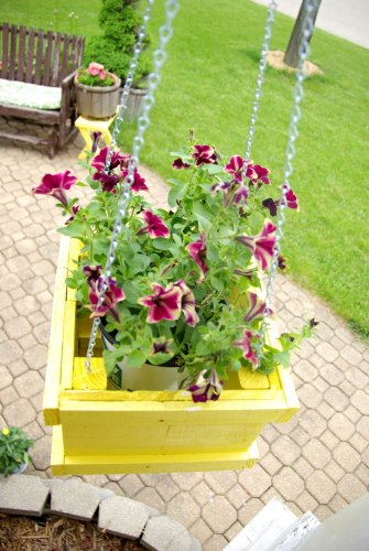 12 Gorgeous Hanging Basket Flowers Ideas for Your Home