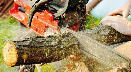 Best Arborist Chainsaw [April 2021] | Top 5 Picks | HomVela