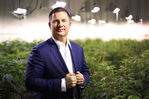 Key Cannabis Industry Executives Forecast Changes Due to Legalization
