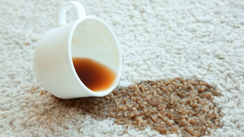 Why The Spot In Your Carpet Keeps Coming Back, And How To Clean It For Good