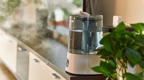 Do Cool Mist Humidifiers Kill Germs In Your Home?