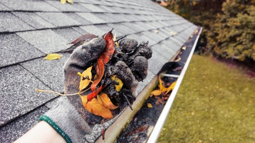 Gutter Cleaning Mistakes You've Been Making This Whole Time