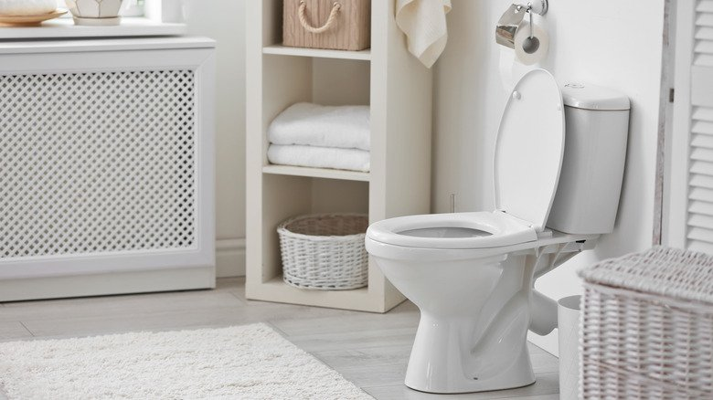This Is What's Really Causing Your Toilet Bowl Stains