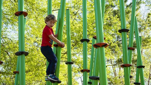 Just in Time for Summer Fun, Arboretum 'Nature Playscape' Now Open
