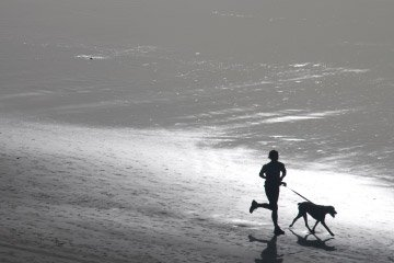 Top 10 Tips for Running with Your Dog