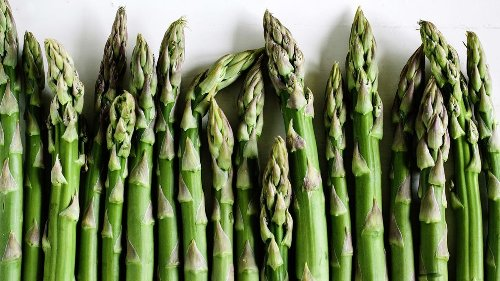 If You Can Smell Asparagus in Urine, Thank Your Genetics