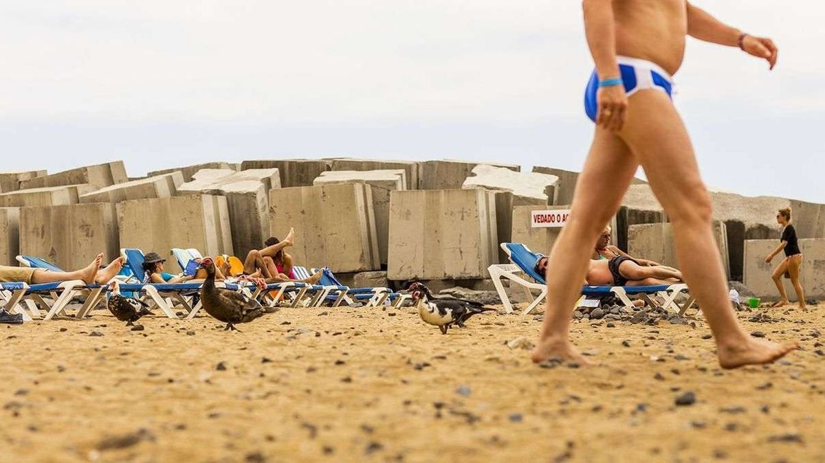 Why Is the Speedo Disappearing From European Beaches?