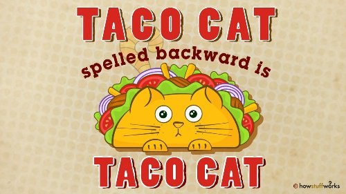3. Taco Cat: It's a Palindrome!