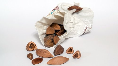 The Pili Nut Is a Nutritional Powerhouse Worth Cracking