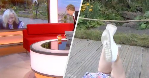 Carol Kirkwood Dragged To Floor By Guide Dog During Live BBC Breakfast Broadcast