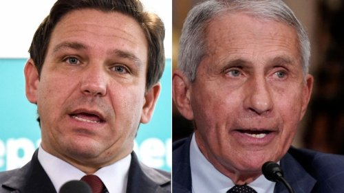 DeSantis Gets Vital History Lesson From Fauci Over 'Completely Incorrect' Vaccine Claim