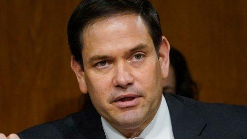 Marco Rubio's Weak Joke About Biden And Neanderthals Backfires On Twitter