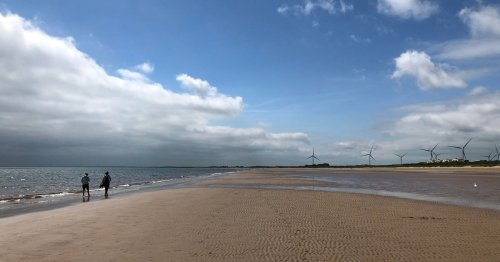 The untouched East Yorkshire beach hidden in plain sight