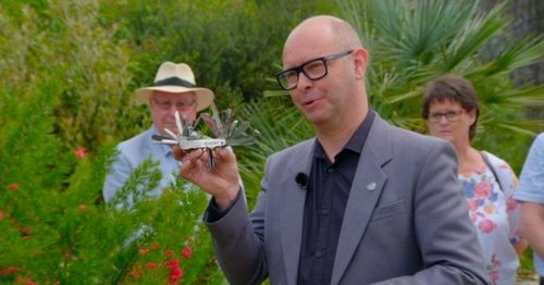Antique's Roadshow guest shocked at value of his dad's multitool