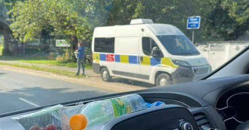 People don't know what to make of man 'blocking' mobile speed camera