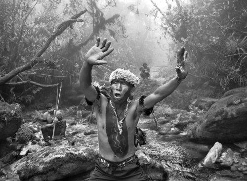 Photographie. Le message d'alerte de Salgado pour l'Amazonie