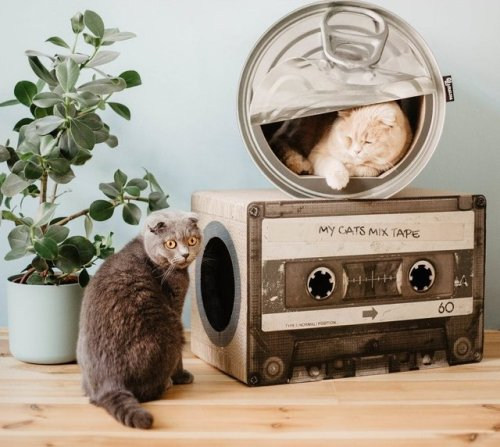 The 18 Most Ridiculous (and Adorable) Cat Scratchers You Can Buy | Hunker
