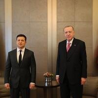 Turkish, Ukrainian presidents meet in Istanbul - Turkey News