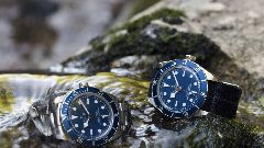 Discover tudor watches