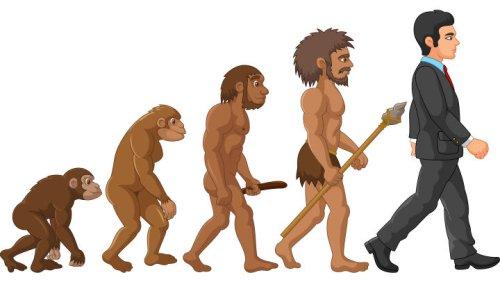 Magazine - Human Evolution