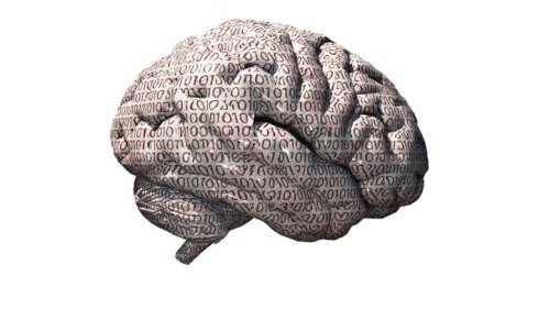 New Theory Has A Radical Approach To Understanding How Memories Are Stored In Our Brain