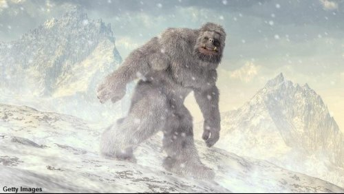 Russian Politician Reveals Role in Staging Siberian Yeti Sightings to Attract Tourists