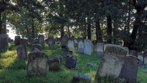 Archaeologists Uncover More Than 500 Black Graves Near Historic Church | BIN: Black Information Network