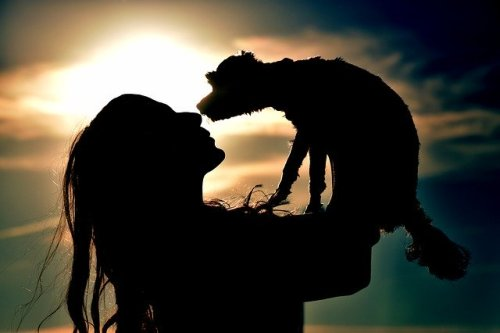 5 Ways To Tell Your Dogs You Love Them In Their Own Language
