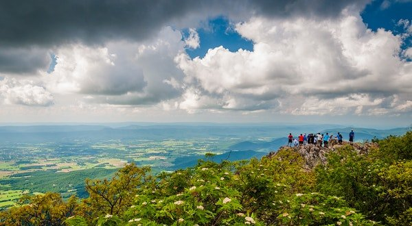 Mountain Music and Sparkling Streams: The Ultimate Blue Ridge Parkway Road Trip