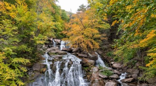 Local Getaways: The Catskills Are Calling